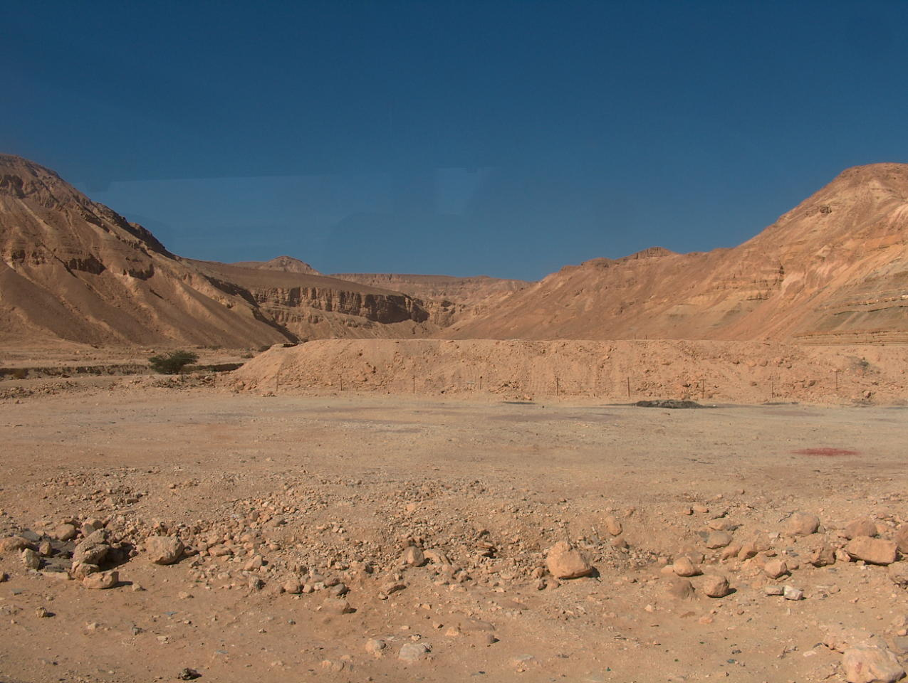 Wüste In Israel