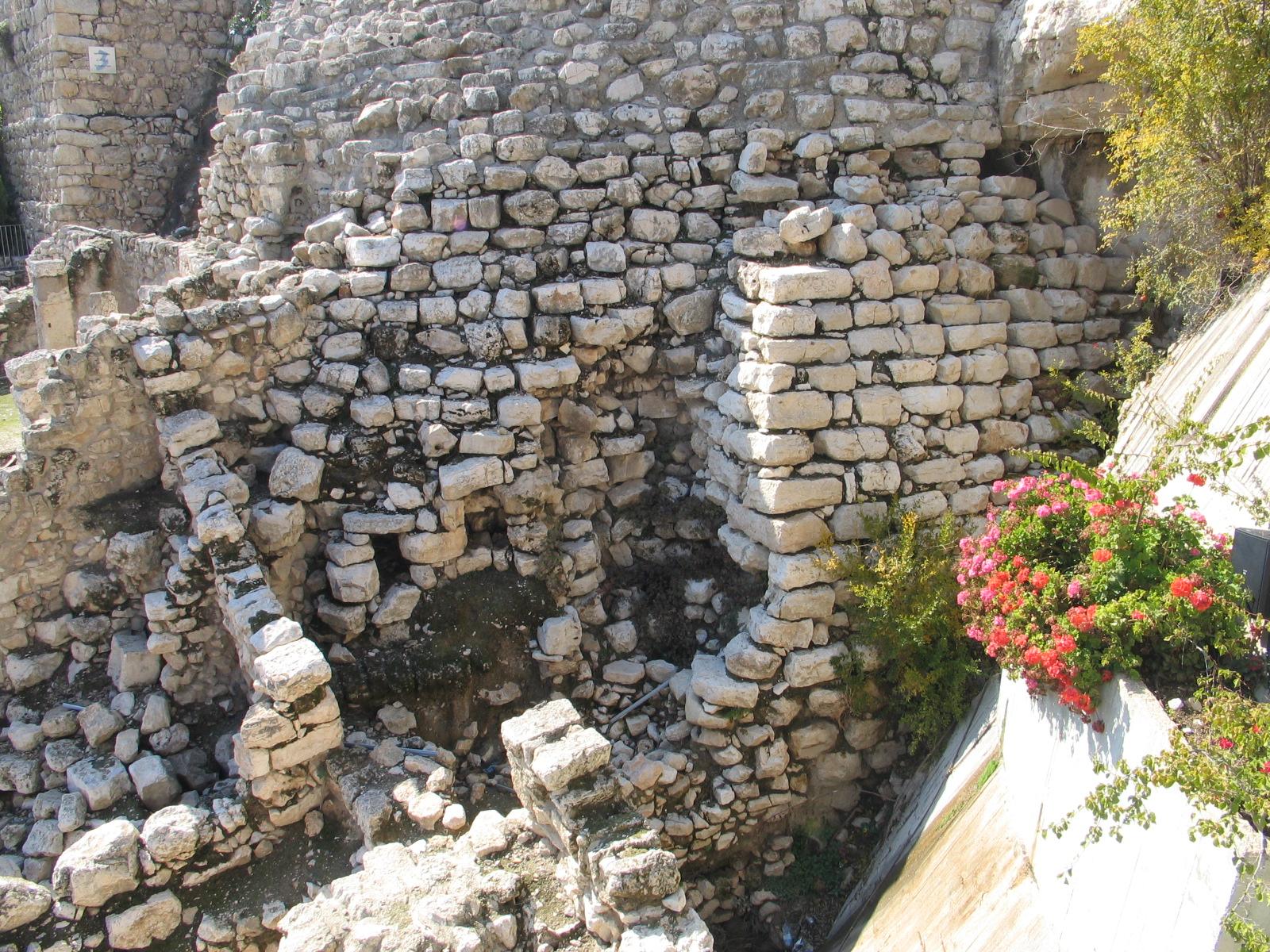 lebendige steine petrus